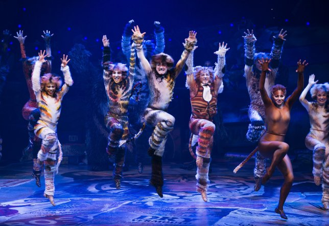 Cats at McAllen Performing Arts Center
